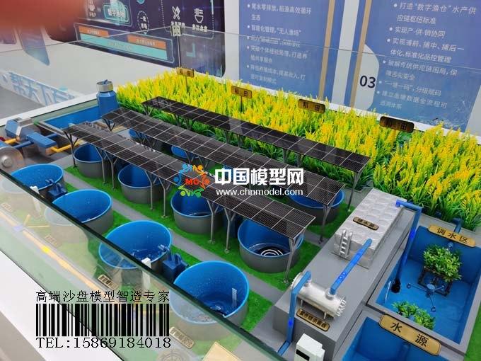 数字养殖沙盘模型,稻鱼共生模式打造数字渔业样板