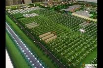 农业葡萄庄园沙盘模型