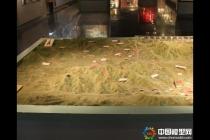 部队演习地形沙盘模型,军事地形沙盘模型