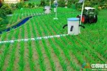智慧农业沙盘模型农业控制系统实训平台