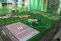 潘村湖农场沙盘模型